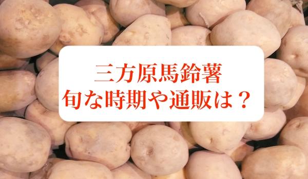 三方原馬鈴薯の旬や通販について